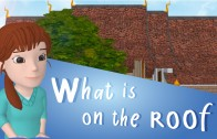 เรื่อง What is on the Roof